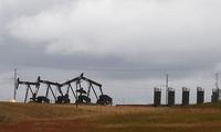 美油产量接近历史最高纪录 油价周四基本持平
