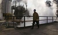 奥地利大使:伊朗停止原油出口会令欧洲损失百亿美元