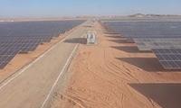 CES成功完成埃及20兆瓦太阳能项目