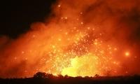 大火在距葡萄牙首都40公里处肆虐 700余名消防员参与灭火