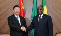 习近平同塞内加尔总统萨勒举行会谈 两国元首一致同意携手努力 推动开创中塞关系更加美好的明天