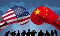 傅莹:中美关系再次站在方向选择关口