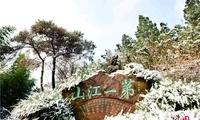 新沂马陵山雪色如春 游人暖暖如沉醉江南