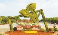 首届海南岛国际电影节:来海南,赴一场光影之约