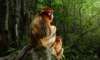 2018年野生动物摄影大赛落幕 佳作展现自然之美