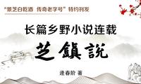 逄春阶乡野小说《芝镇说》连载之三十三:世间脉象